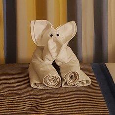 Towel Animals