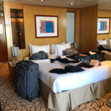 Celebrity Constellation Professional Photo