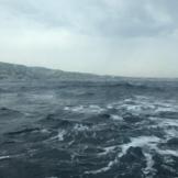 Wind Surf Professional Photo