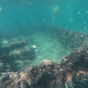 More of the shipwreck