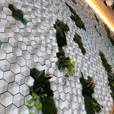 Garden wall in Eden