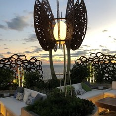 Rooftop Garden at Sunset