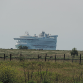 The Ship inthe Paddock. Taken fromthe train.